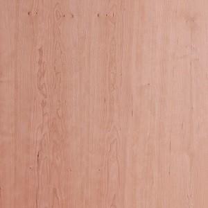 Muster Amerikanischer Kirschbaum